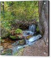 Millcreek Stream Acrylic Print