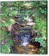 Mini Waterfall At Lower Tahquamenon Falls Park Acrylic Print