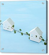 Miniature Houses And Wire Vine (ecology Image) Acrylic Print