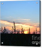 Minnesota Sunset 12 Acrylic Print