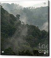Misty Cloud Forest Matagalpa Nicaragua Acrylic Print