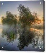 Misty Dawn 2.0 Acrylic Print