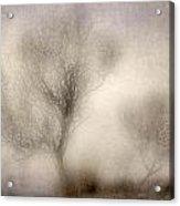Misty Dreams Acrylic Print