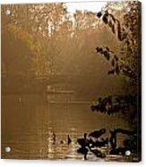 Misty Lake Acrylic Print