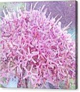 Misty Lilac Morning Acrylic Print