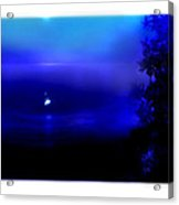 Misty Mangrove Moon Reflection Acrylic Print