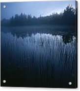 Misty View Of Taiga Forest Acrylic Print