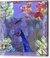 Mixed Media Peacock Art - Gipsy Rondo Acrylic Print