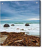 Moeraki Boulder East Coast Of South New Zealand Acrylic Print