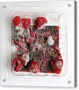 Moldy Raspberries Acrylic Print