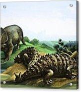 Monoclonius And Scolosaurus Acrylic Print
