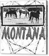 Montana Horse Design Acrylic Print