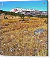 Montana100 0885  Acrylic Print