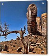 Monument Valley Lone Tree Acrylic Print
