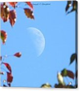 Moon Amidst Red Leaves Acrylic Print