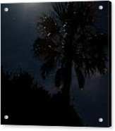Moon And Stars And Palm Trees Acrylic Print
