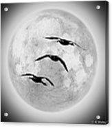 Moon Geese Acrylic Print