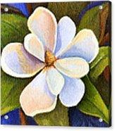 Moon Light Magnolia Acrylic Print by Elaine Hodges