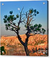 Moon Over Bryce Canyon Acrylic Print