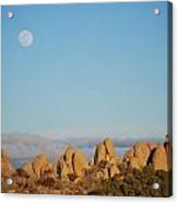 Moon Over Joshua Tree Acrylic Print