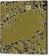 Moon Rock, Sem Acrylic Print