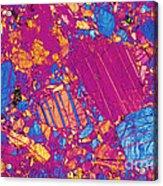 Moon Rock, Transmitted Light Micrograph Acrylic Print by Michael W. Davidson - FSU
