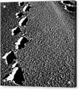 Moon Walk Acrylic Print by Empty Wall