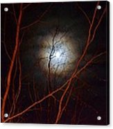 Moonlight By The Camp Fire Acrylic Print