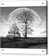 Moonlit Silhouette Acrylic Print