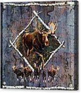 Moose Lodge Acrylic Print by JQ Licensing