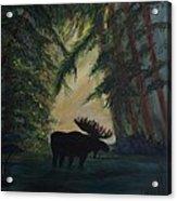 Moose Pond Hideout Acrylic Print