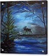 Moose Pond Acrylic Print