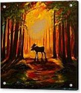 Moose Sunset Acrylic Print