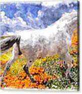 Morisco In Spring Flowers Acrylic Print