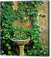 Morning Glory Garden In Provence Acrylic Print