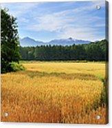 Morning In Hokkaido Acrylic Print