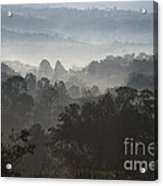 Morning Mist In Panama's Highlands Acrylic Print