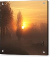 Morning Moods Acrylic Print
