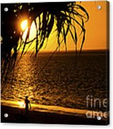 Morning Rays Acrylic Print
