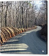 Morning Shadows On The Forest Road Acrylic Print