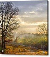Morning Trees Acrylic Print