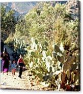 Moroccan People And Cacti Acrylic Print