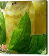 Moroccan Preserved Lemons Acrylic Print by James Temple