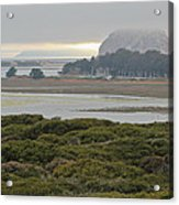Morro Rock From The Elfin Forest Acrylic Print