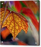 Mosaic Autumn Acrylic Print