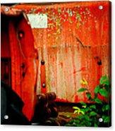 Moss And Rust V Acrylic Print by Toni Hopper