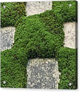 Moss And Stepping Stones Acrylic Print by Rob Tilley