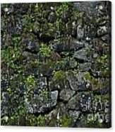 Moss And Stone Acrylic Print