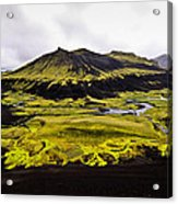 Moss In Iceland Acrylic Print