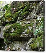 Moss N Rock Acrylic Print
